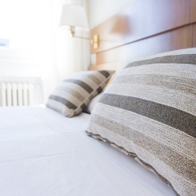 punaise de lit hotel Juan-les-pins 06160